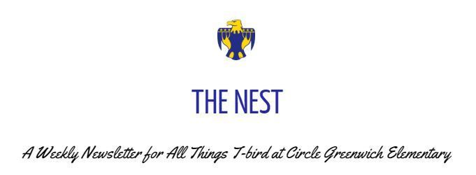 The Nest Newsletter 2nd Edition